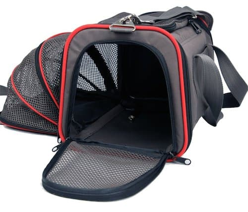 Best Carry On Dog Carrier