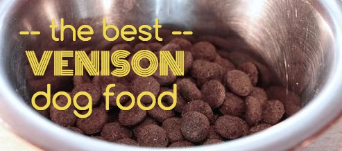 Best Quality Dog Food