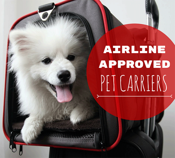 8 best airline approved pet carriers for in cabin flights for Small dogs on airplanes